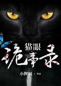 猫眼诡事录小说